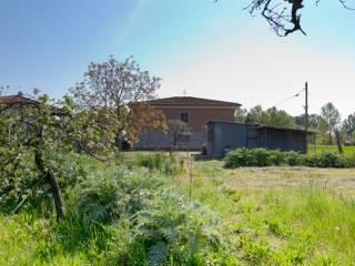 Foto - Villa via Giuseppe Toniolo, Campo, San Giuliano Terme