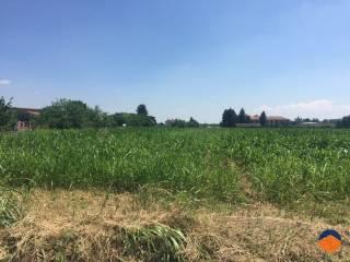Foto - Terreno agricolo in Vendita a Robecco sul Naviglio