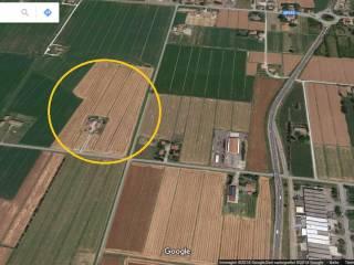 Foto - Terreno agricolo in Vendita a San Giovanni in Persiceto