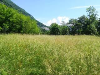 Foto - Terreno agricolo in Vendita a Caslino d'Erba