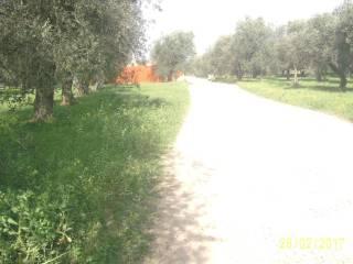 Foto - Terreno edificabile residenziale a Alghero