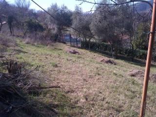 Foto - Terreno agricolo in Vendita a Capriolo