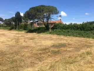 Foto - Villa via della Selciatella, Bracciano
