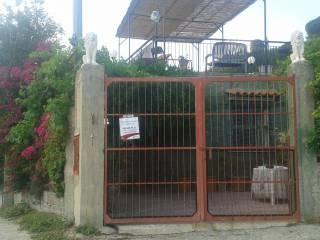 Foto - Terreno agricolo in Vendita a Messina