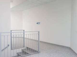 Immobile Affitto Guastalla