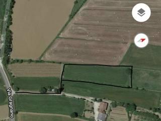 Foto - Terreno agricolo in Vendita a Sansepolcro