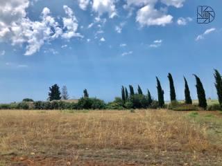 Foto - Terreno agricolo in Vendita a Menfi