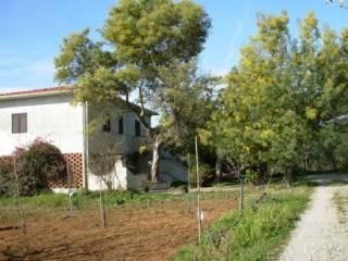 Foto - Bilocale Località Mola 3, Capoliveri