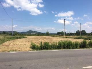 Foto - Terreno agricolo in Vendita a Civitella in Val di Chiana