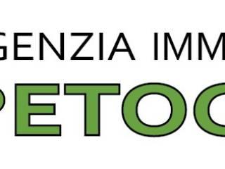 Immobile Affitto Reggiolo