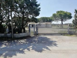 Foto - Villa Strada Regionale Pontina, Borgo Grappa, Latina