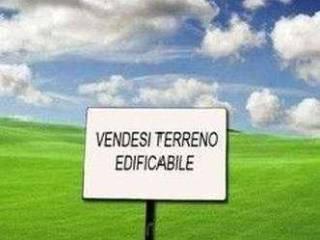 Foto - Terreno edificabile residenziale a Chioggia