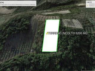 Foto - Terreno agricolo in Vendita a Lentella