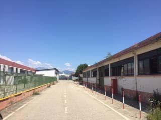 Immobile Affitto Rivalta di Torino