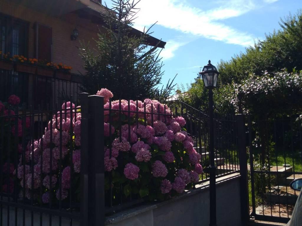 foto  Villa via Salvador Allende, Linarolo
