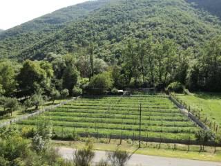 Foto - Terreno agricolo in Vendita a Rieti