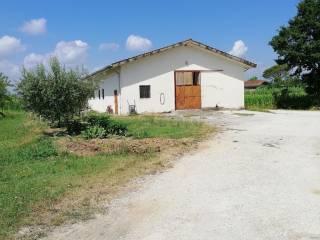 Foto - Terreno agricolo in Vendita a Larciano