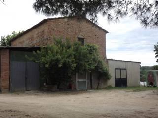 Foto - Terreno edificabile residenziale a Terricciola