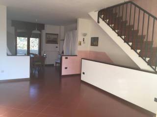 Foto - Casa indipendente Strada Provinciale di Golese 178, Torrile