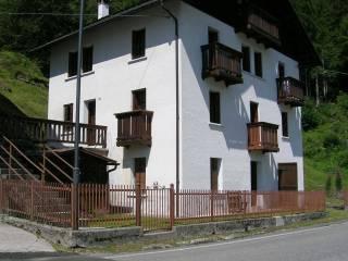 Foto - Villa via Ponte Fresco 5, Gosaldo