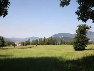 Foto - Terreno agricolo in Vendita a Sale Marasino