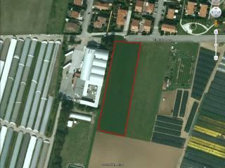 Foto - Terreno agricolo in Vendita a San Paolo d'Argon