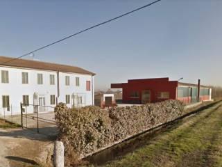 Foto - Rustico / Casale, buono stato, 300 mq, Casaleone