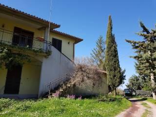 Foto - Rustico / Casale Strada Comunale, Petricci, Semproniano