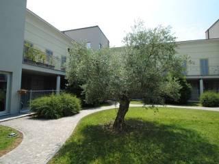 Foto - Bilocale ottimo stato, primo piano, Borgo Alto, Pavia