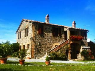 Foto - Rustico / Casale Località Casa Perazza, Castel Giorgio