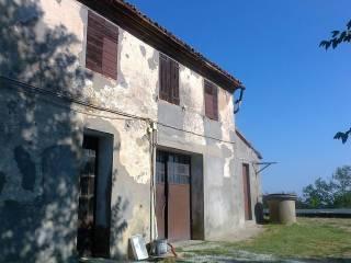 Foto - Rustico / Casale via Cerbiano, Collinello, Bertinoro