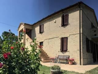 Foto - Villa Contrada Santa Maria Nuova, Ostra Vetere