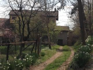 Foto - Rustico / Casale Casale Montecchio, Bogogno