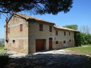 Foto - Rustico / Casale via Santa Maria, Corinaldo