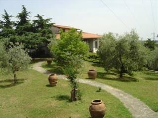 Foto - Villa, ottimo stato, 650 mq, Monte San Savino