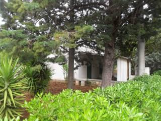 Foto - Villa Contrada Cristo della Cozzana, Cozzana, Monopoli