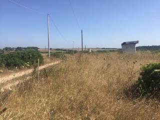 Foto - Terreno agricolo in Vendita a Stintino