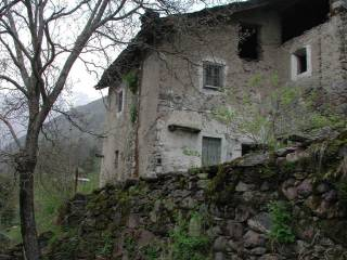 Foto - Terreno agricolo in Vendita a Gandellino