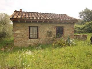 Foto - Terreno agricolo in Vendita a Fauglia