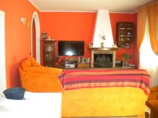 Foto - Appartamento ottimo stato, secondo piano, Bibbona