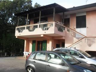 Foto - Appartamento buono stato, Riparbella