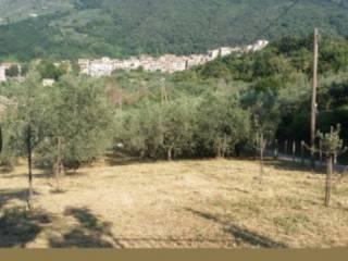 Foto - Terreno agricolo in Vendita a Genazzano