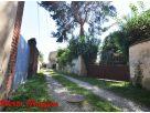 Appartamento Affitto San Benigno Canavese