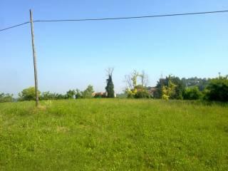 Foto - Terreno edificabile residenziale a Alessandria