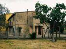 Casa indipendente Vendita Torrita di Siena