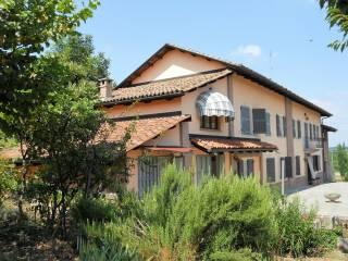 Foto - Rustico / Casale, ottimo stato, 392 mq, Montegrosso d'Asti