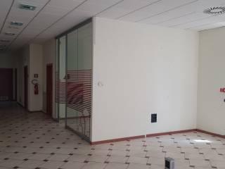 Immobile Affitto Montefiascone