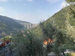 Foto - Terreno edificabile residenziale a Avegno