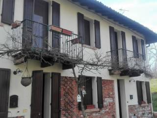 Foto - Trilocale Casoni, Casoni, Carbonara al Ticino
