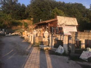Foto - Terreno edificabile commerciale a Trevignano Romano